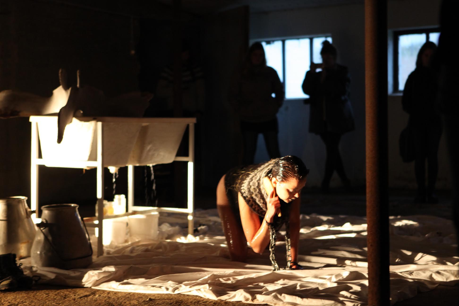 Local Art Performances by Icelandic and International Artists: Plan B Art Festival in Borgarnes